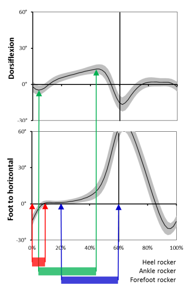 Rocker graphs