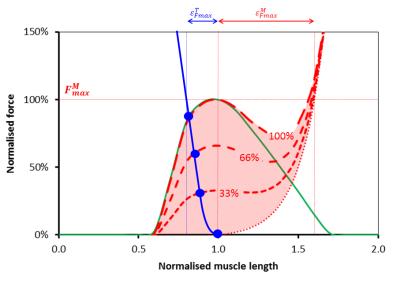 MTU graph
